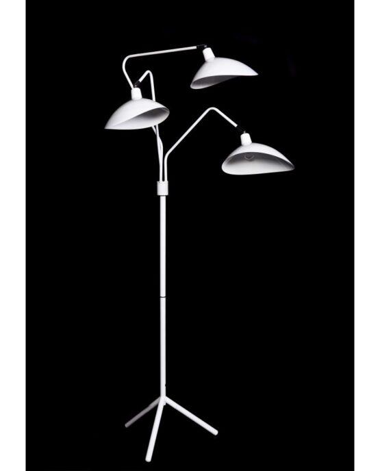 immagine lampada da terra e piantana