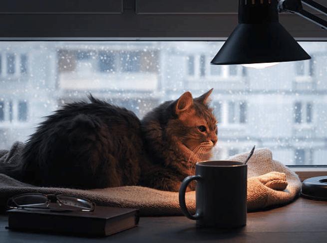 Soluzioni di arredo lampade calde